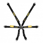 Schroth Enduro 2x2 FHR 6 Point Harness